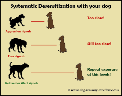 Treating Reactivity – Desensitisation and Counter Conditioning