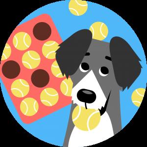 Dogo app game