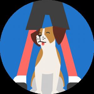 Program Uroczych sztuczek Dogo