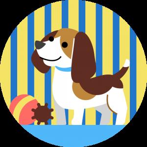 Zapobiegnij lękom separacyjnym u psa