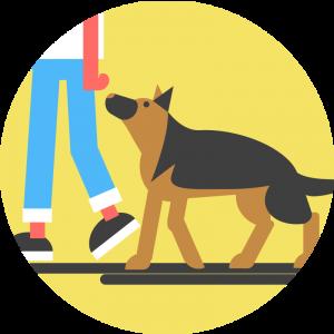 Dogo heel